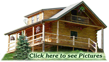 Rent this log cabin in Morgan County, near McConnelsville, Ohio